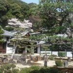 京都 宇治 興聖寺
