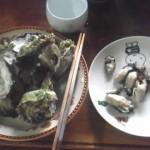 今日の昼食-かき