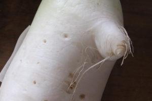 人の顔の大根(鼻の部分をアップ)
