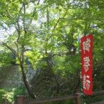 岡崎城「岡崎公園内(2019/5/5)」