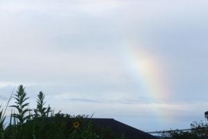 南公園上空に虹が見えた