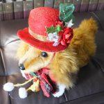 わんこの部屋「クリスマス帽子(赤)2016年11月」