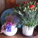 玄関先の花「カーネーションとアートフラワー」