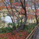 金沢城公園 池と紅葉1(2018/12/8)