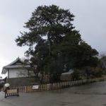 金沢城公園 石川門へ(2018/12/8)