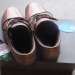 靴「ウォーキングシューズ(2016/4/27)」