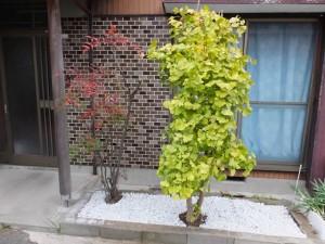 家の庭「玄関口の花壇(2014/11/11)整地完了」