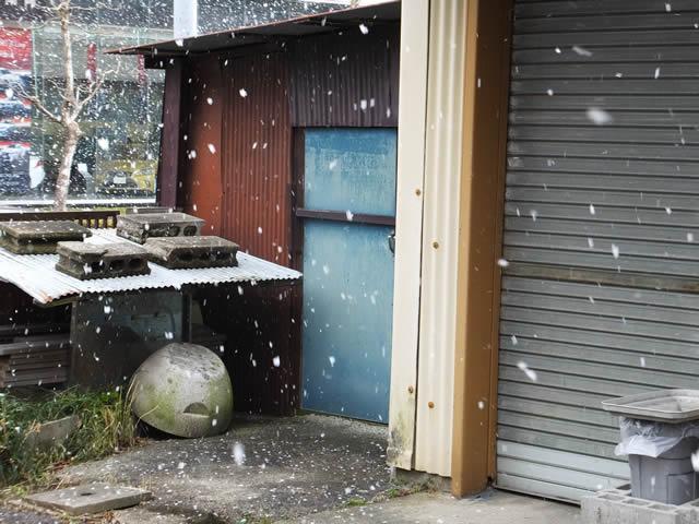 雪が降ってきた(2015/2/9)