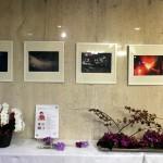 岡崎ニューグランドホテル「華と絵画のコラボレーション展覧会(2015/11/16-30)」