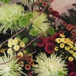 花のハーモニー作品展「リバーサイドギャラリー(2015/11/16)」