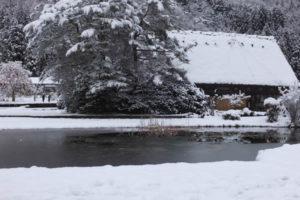 合掌造り集落・白川郷 池は氷はってます(2018/12/9)