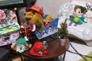 クリスマス用品アソートとうちの犬